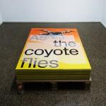 As the coyote flies, Adrien Missika, Emmanuel Crivelli, Dual Room, Centre Culturel Suisse, Paris
