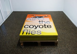 As the coyote flies, Adrien Missika, Emmanuel Crivelli, Dual Room, Centre Culturel Suisse, Paris