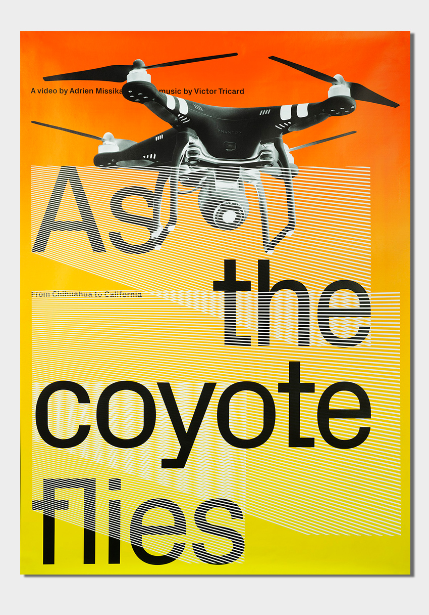 As the coyote flies