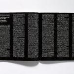 Emmanuel Crivelli, Dual Room, Guy Massaux, Galerie Loevenbruck, Michel Parmentier